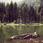 passeggiata-fazzon-lago-dei-caprioli