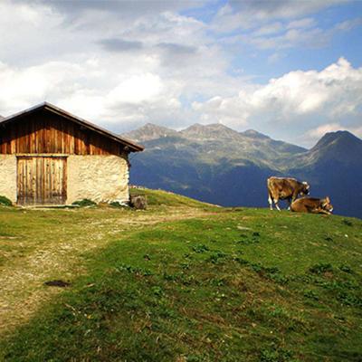 Festeggia il 1 Maggio in Trentino – dal 28 Aprile al 1 Maggio
